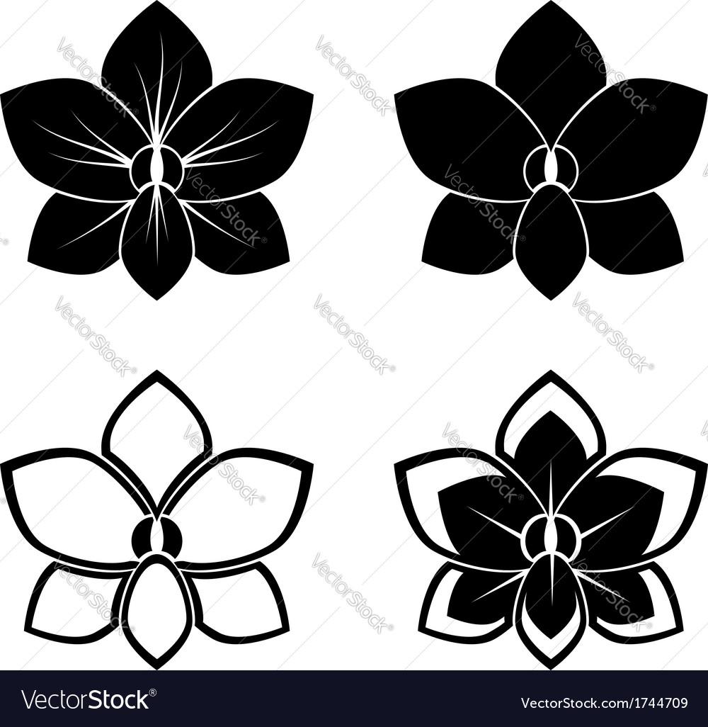 The Artful Stencil FLOWER STENCIL ORCHID 1 STENCIL