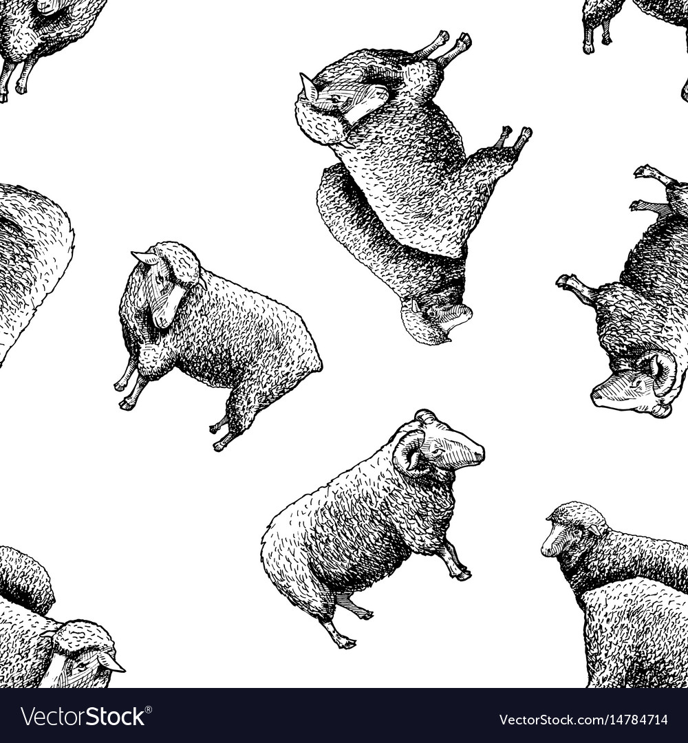 Pattern with sheep
