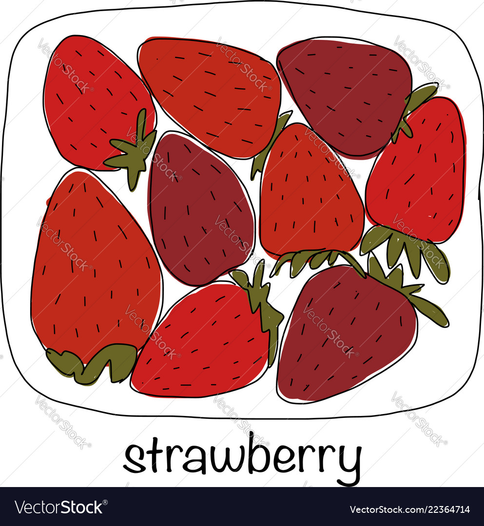 Portion of strawberries sketch for your design