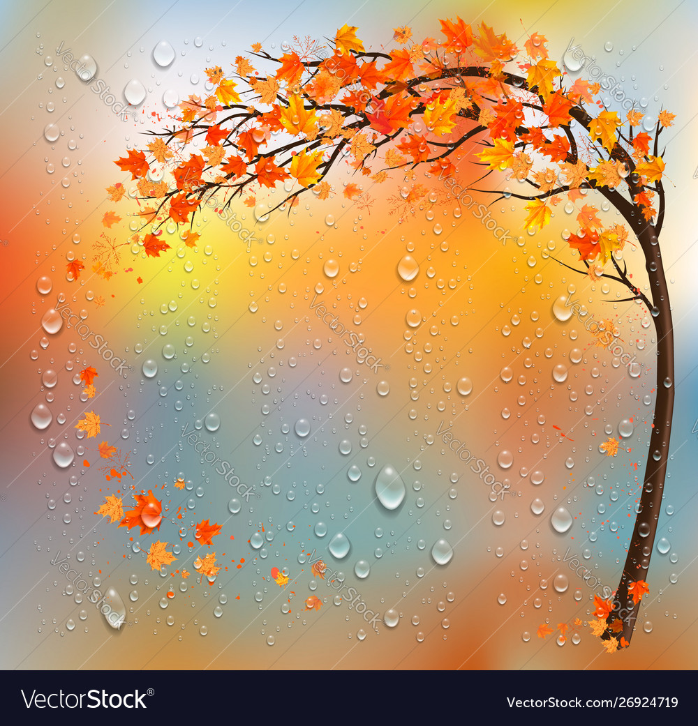 Autumn background with a tree and a colorful