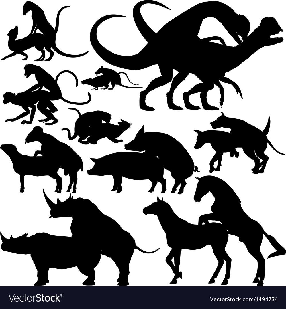 Animals mating