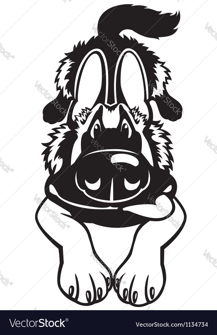 Doggy black white vector image