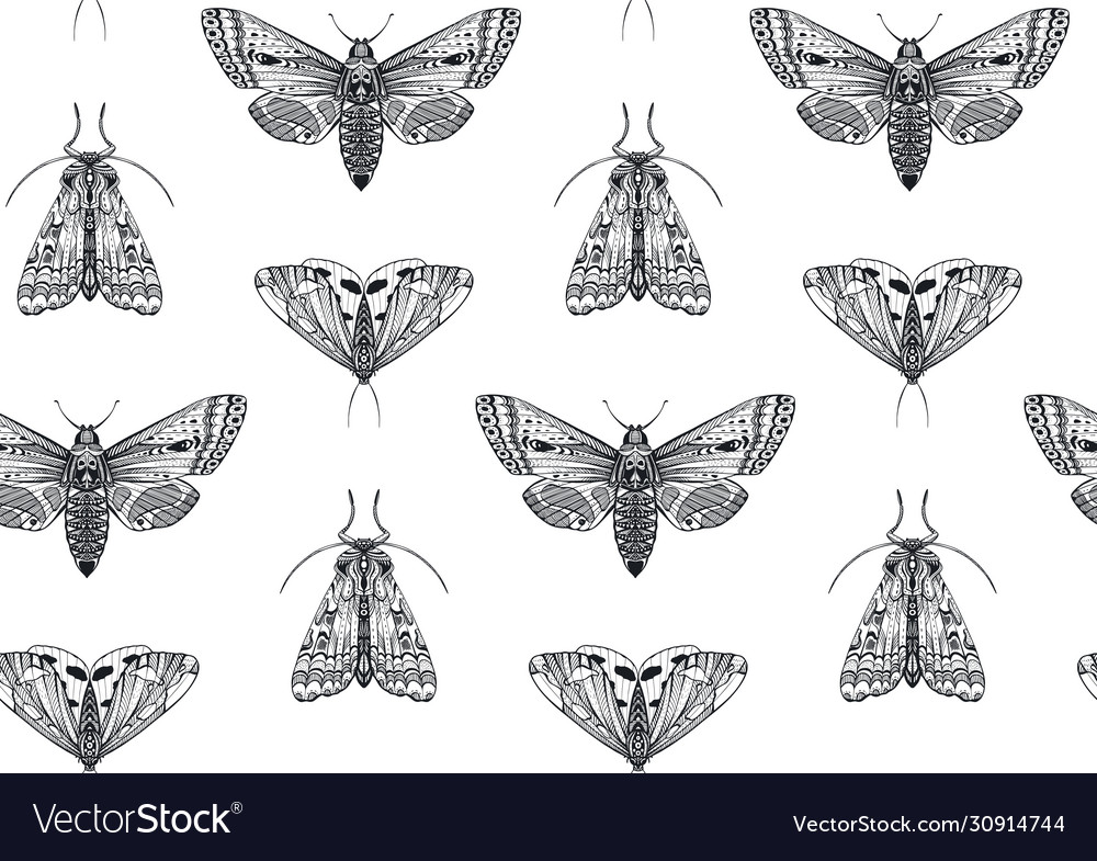 Seamless pattern with hand drawn insects