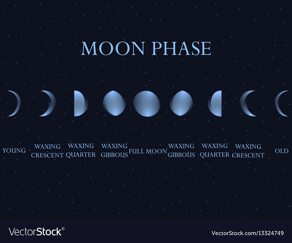 Phases of the moon the whole cycle from new moon