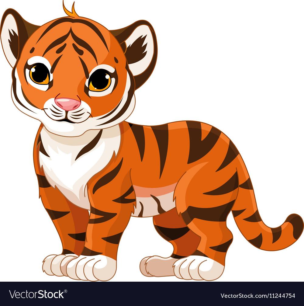 Baby Tiger Royalty Free Vector Image - VectorStock