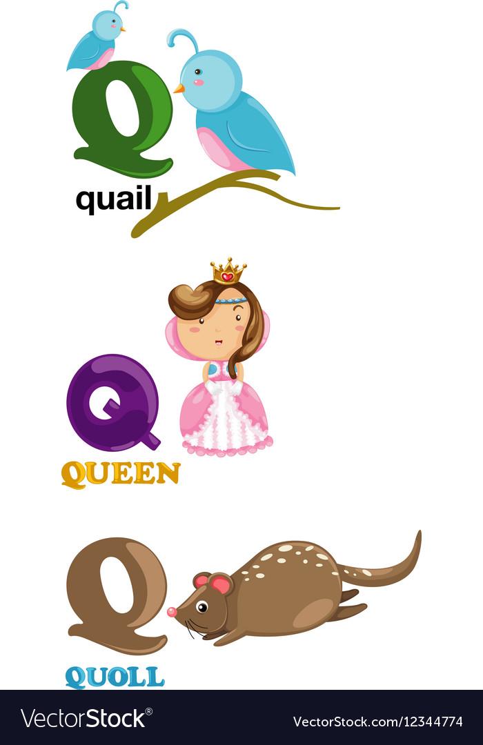 Alphabet letter   Q Royalty Free Vector Image   VectorStock