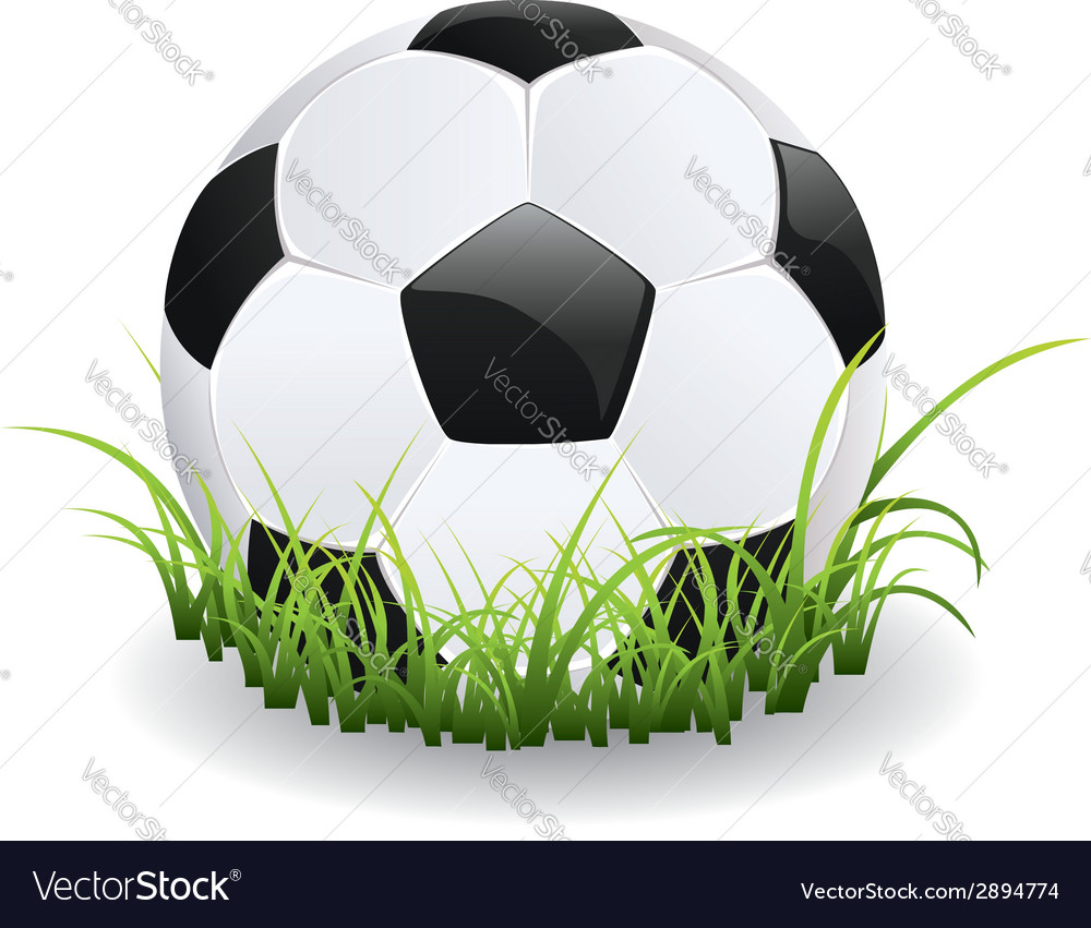Soccer Ball with Grass vector image