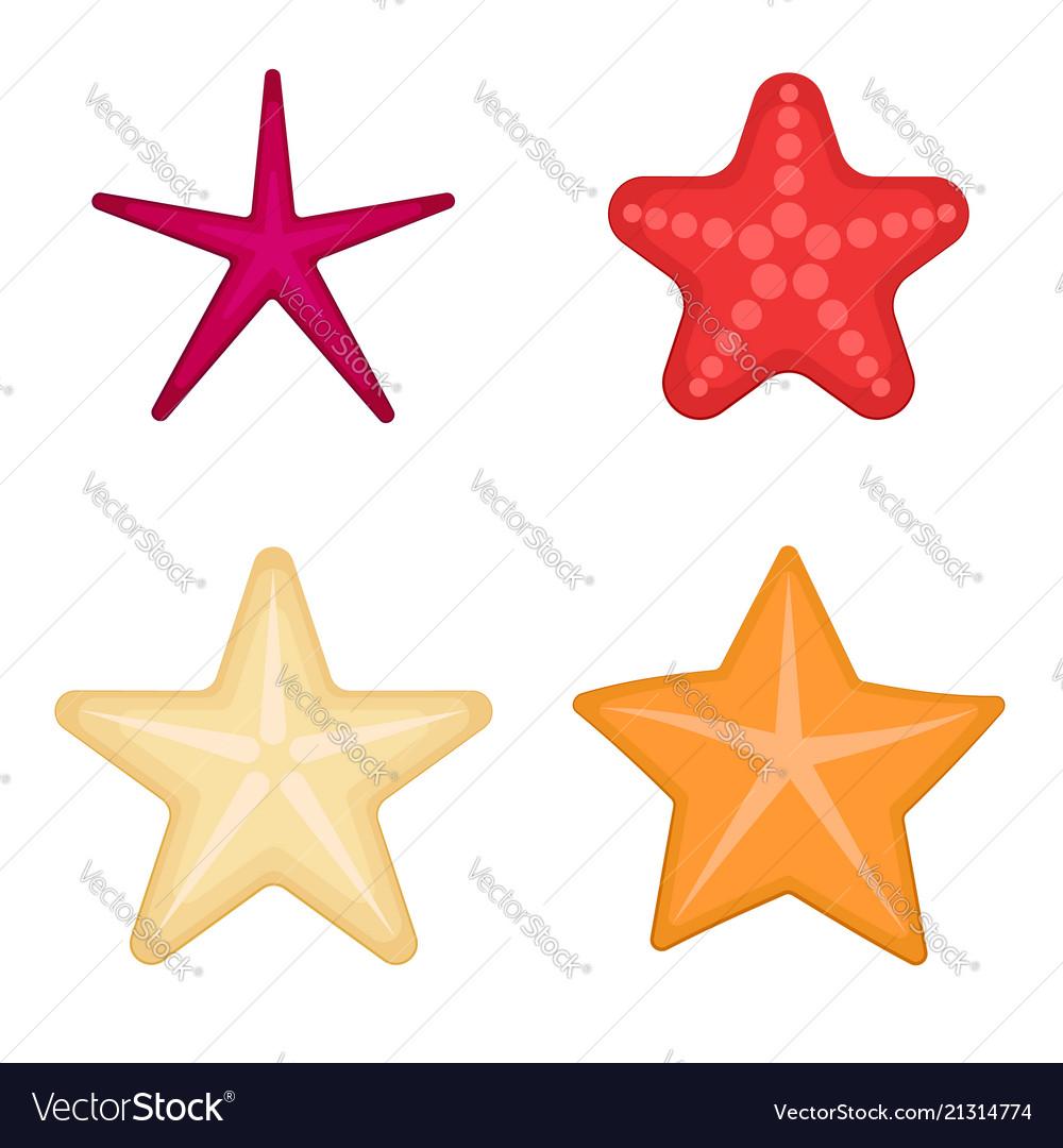 Starfish set on a white background