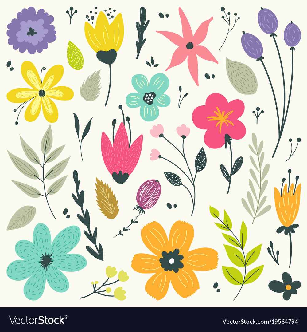 Floral elements in gentle colors isolated vector image