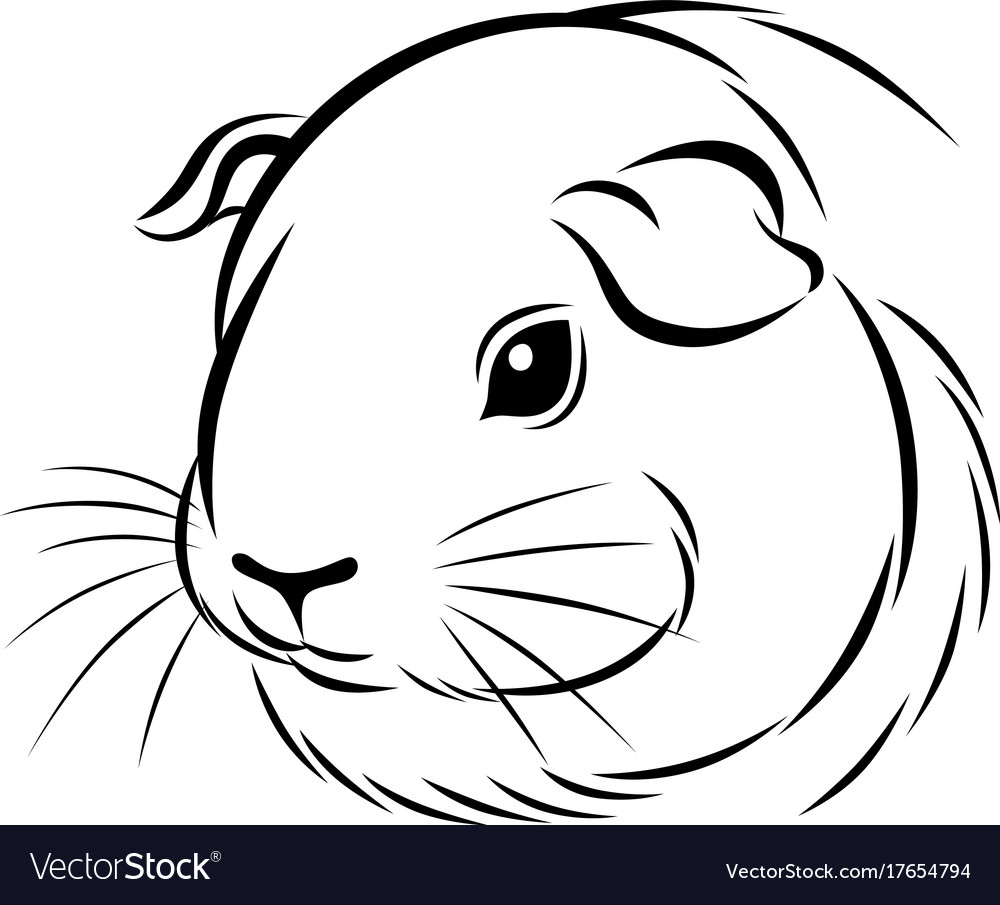 Stylized guinea pig head