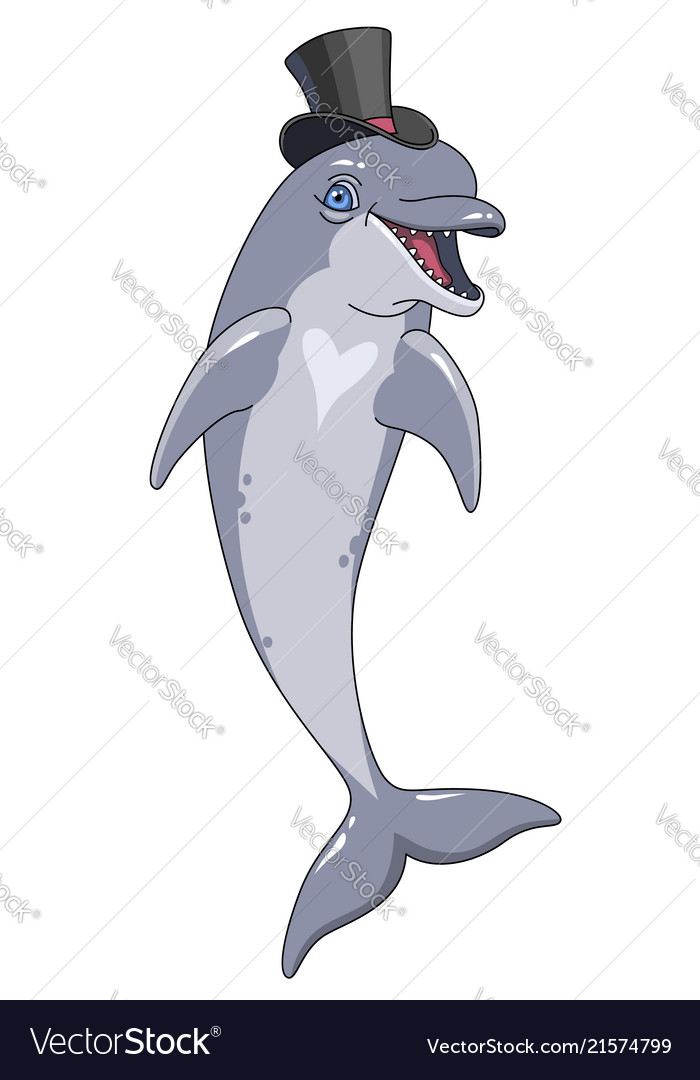 Happy dolphin at cylinder