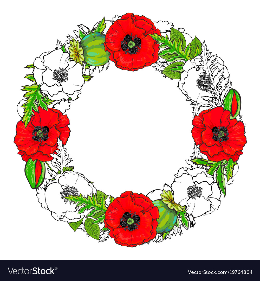 Round frame of poppy flowers buds and leaves vector image mightylinksfo