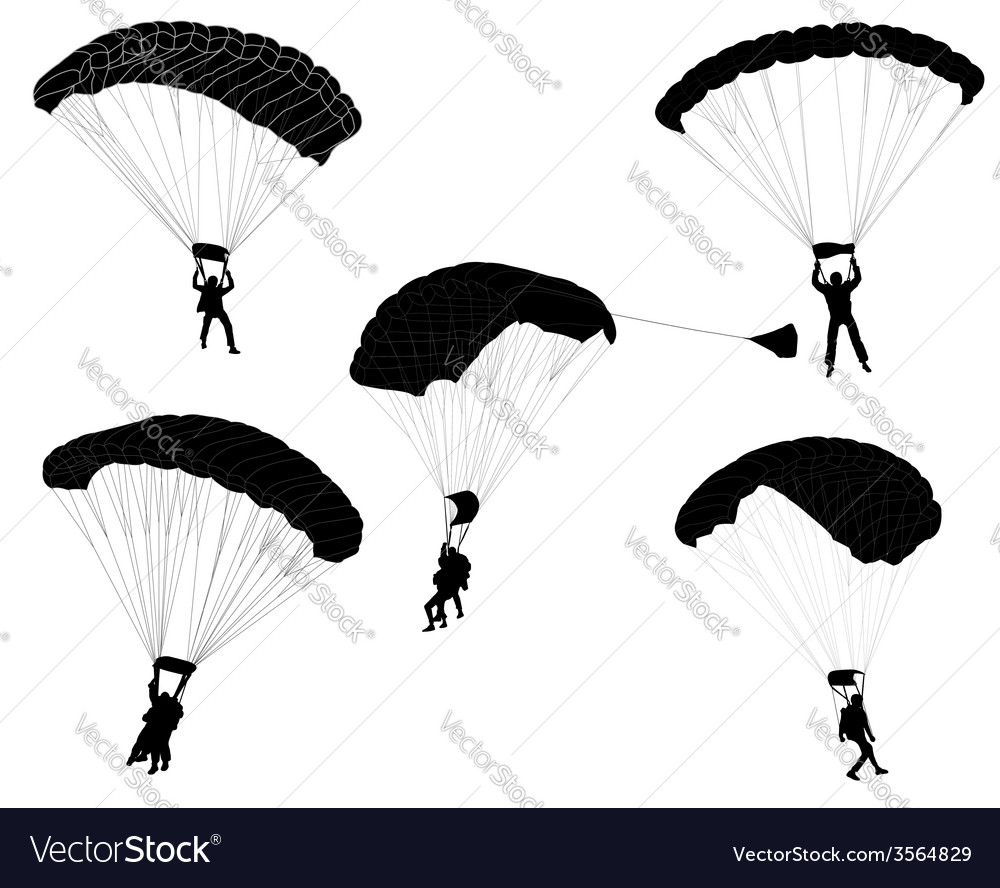 Skydivers vector image