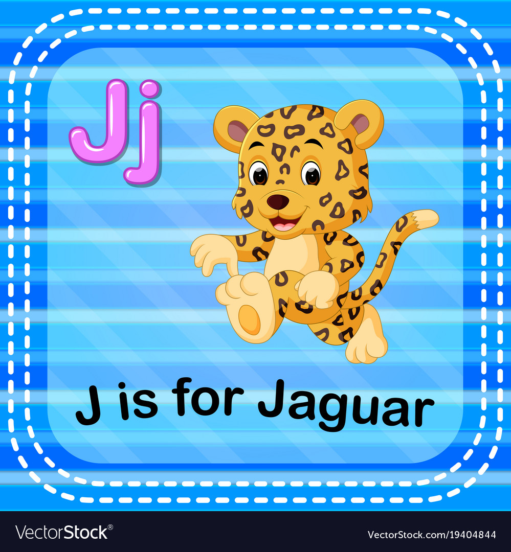 Flashcard Letter J Is For Jaguar Vector Image