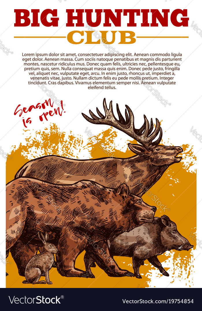 sketch poster of hunting club wild animals vector image
