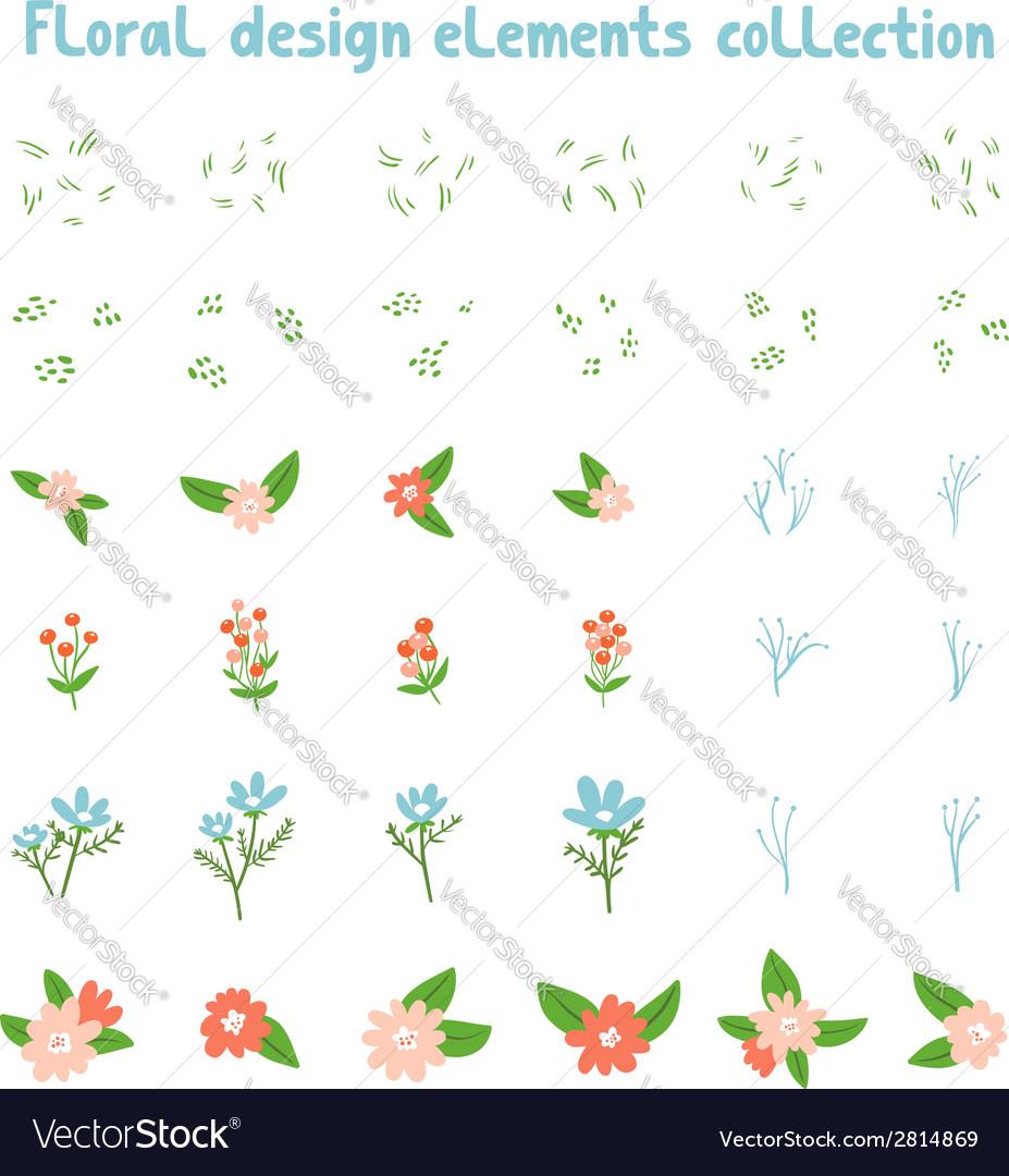 Decorative floral design elements collection
