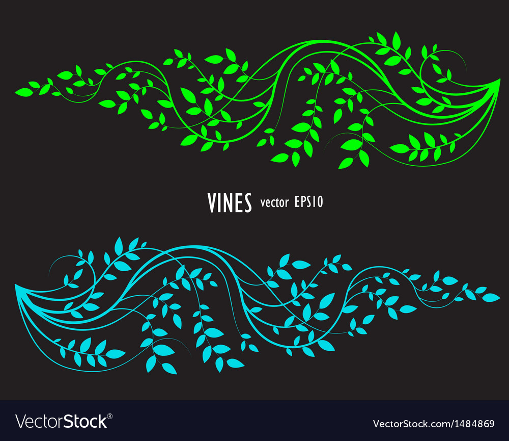 Silhouette vine and leaves floral decorative