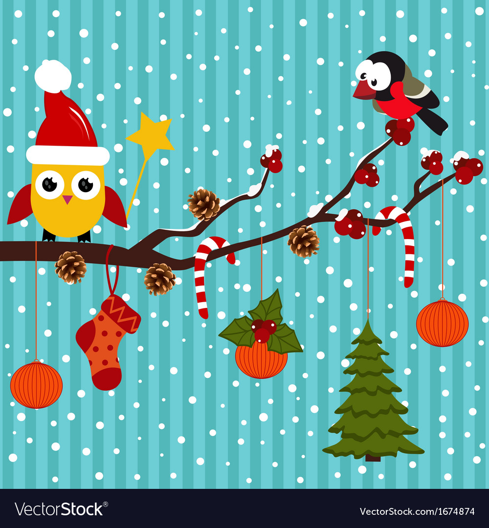 Birds are celebrating Christmas in the forest