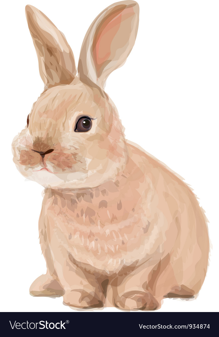 rabbit royalty free vector image vectorstock rh vectorstock com rabbit factory rabbit vector free download
