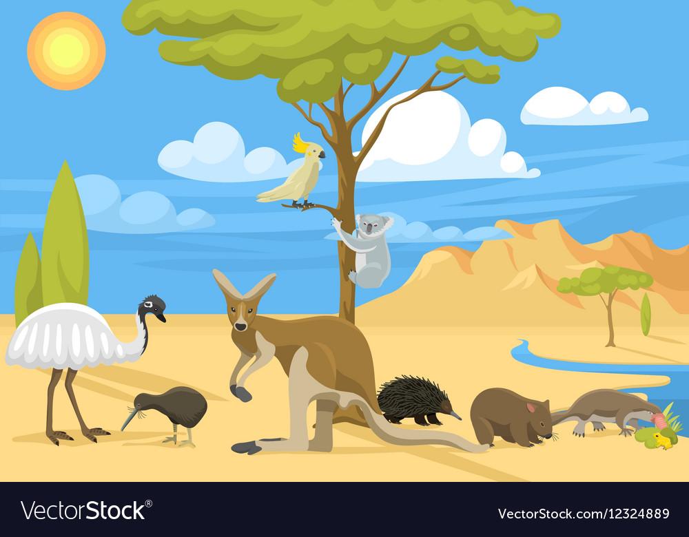 Australia wild life