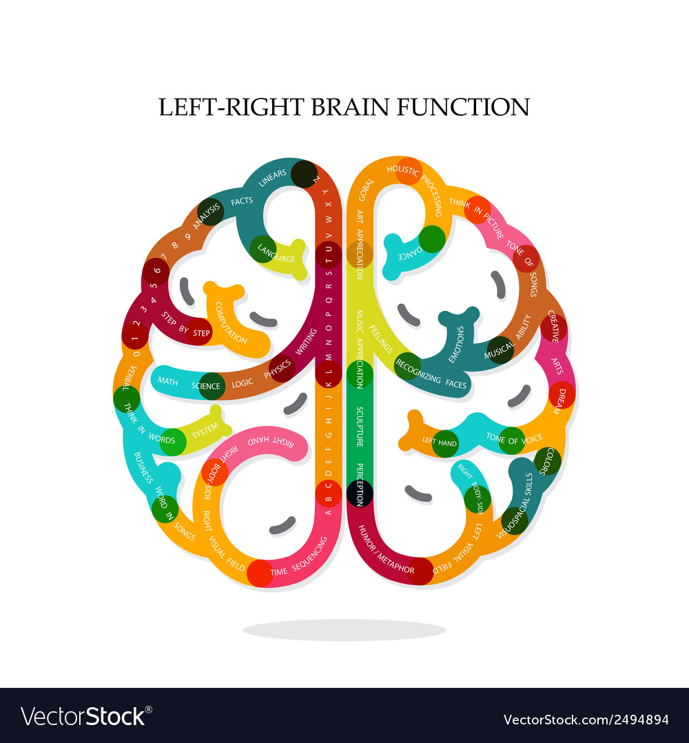 Creative infographics brain function