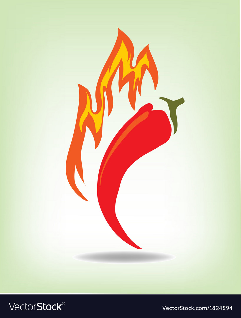 Red hot pepper vector image