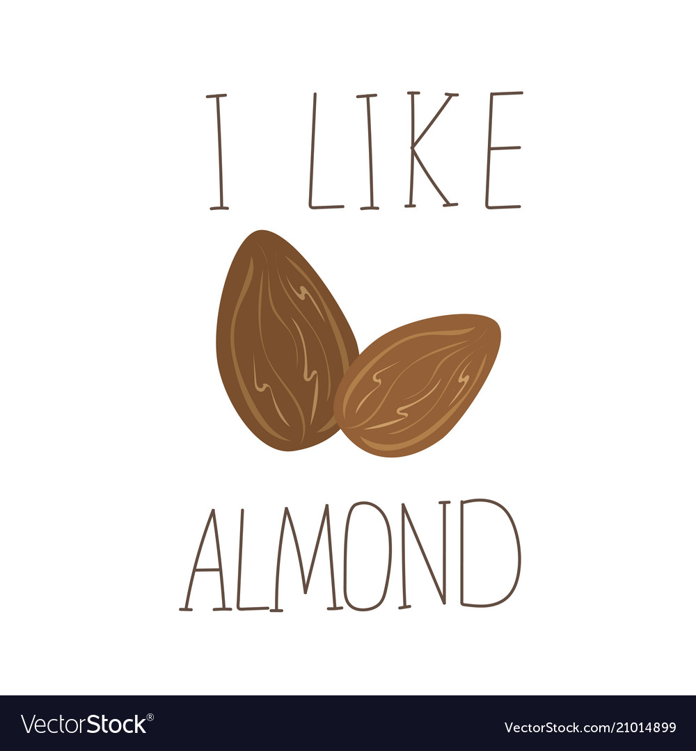 I like almond hand drawn icon design for