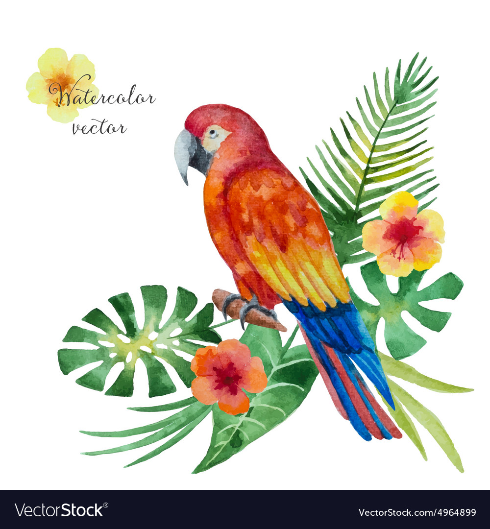 Watercolor parrot flowers and leaves