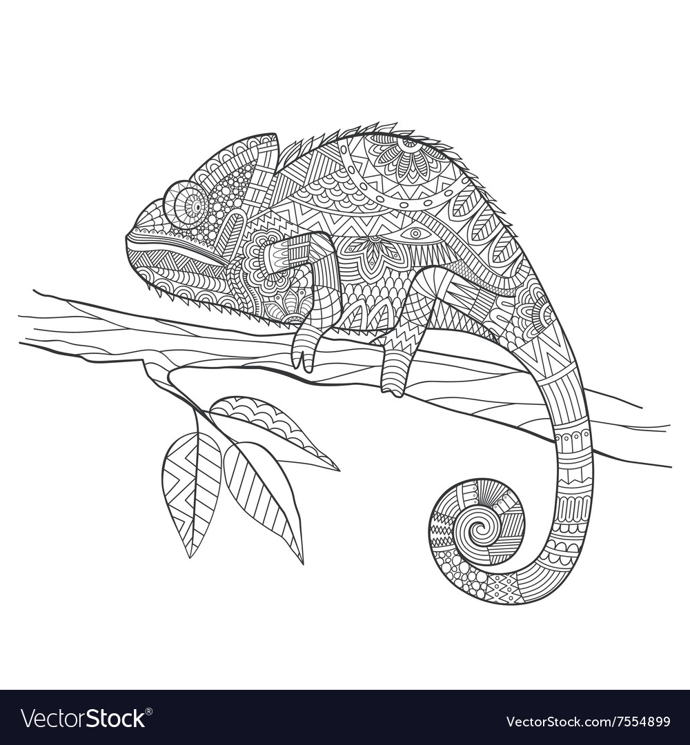 Zentangle stylized Chameleon lizard Hand Drawn vector image