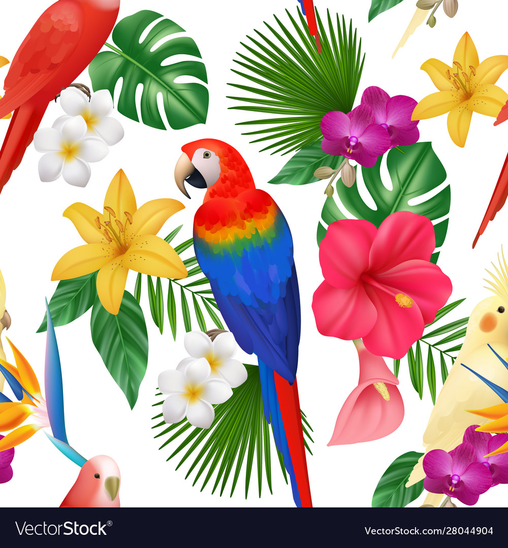 Tropical pattern exotic flowers and birds colored