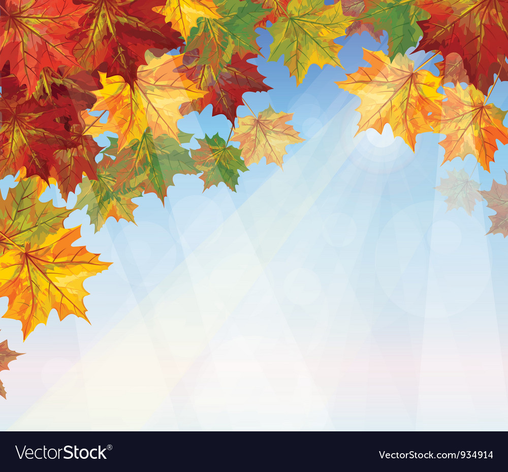 Autumnal leaves on blue sky background
