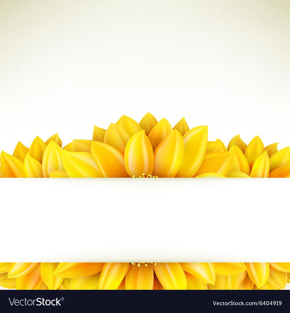 Sunflower on white background EPS 10