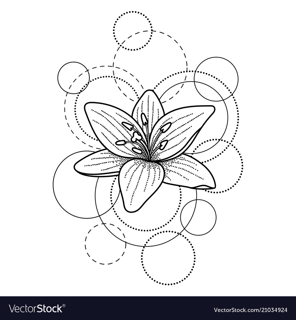 Tattoo with lily and circles on white background vector image izmirmasajfo
