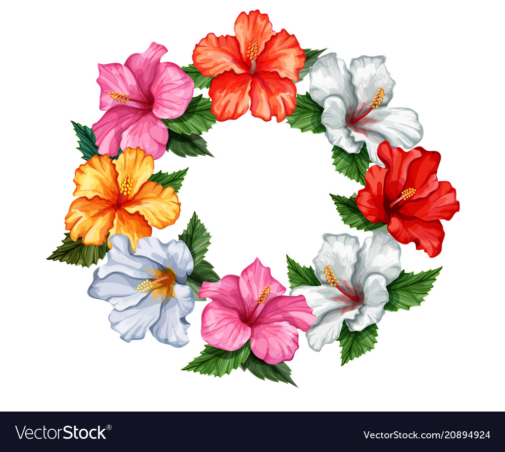 Tropical Leaf Hibiscus Flower Frame Banner Vector Image