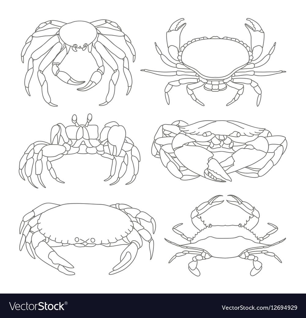 Set of crab icons