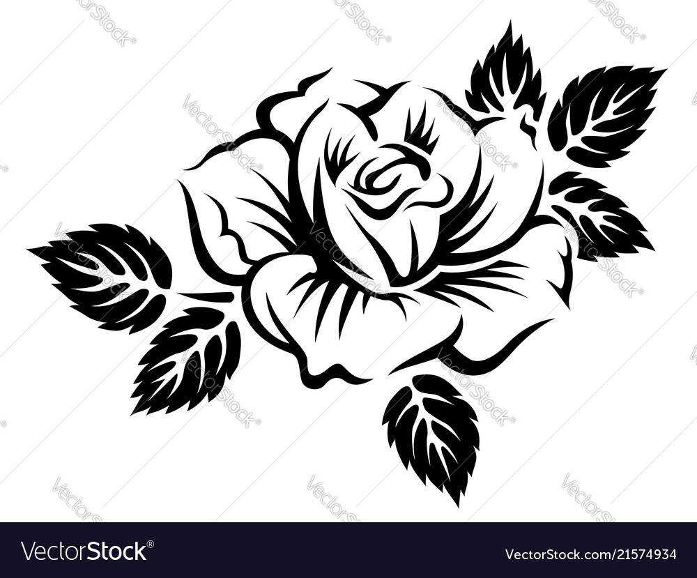 Stylized blooming rose