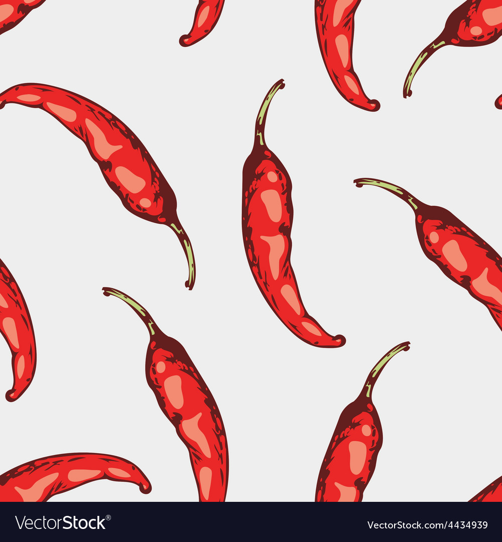 Seamless pattern with hand drawn spicy chili vector image