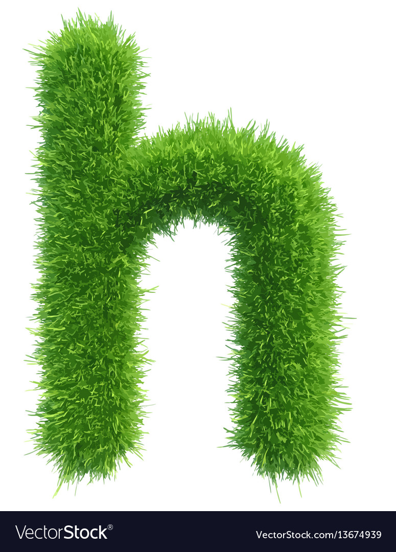 82efd79a1 Small grass letter h on white background Vector Image