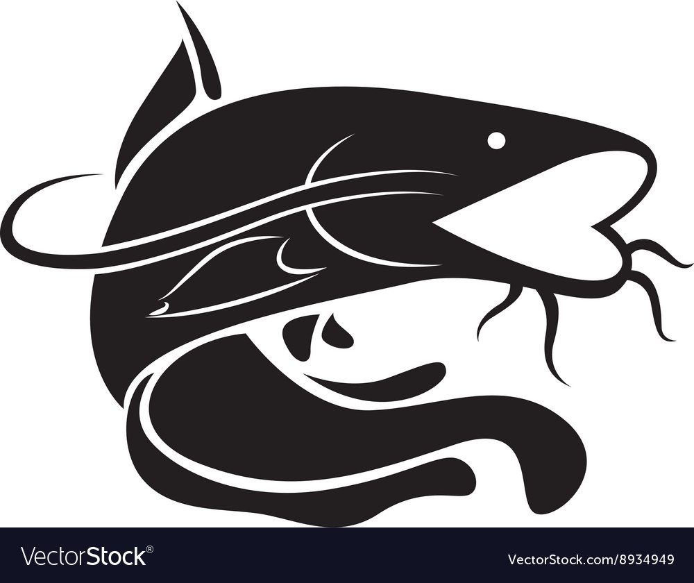 Graphic catfish vector image