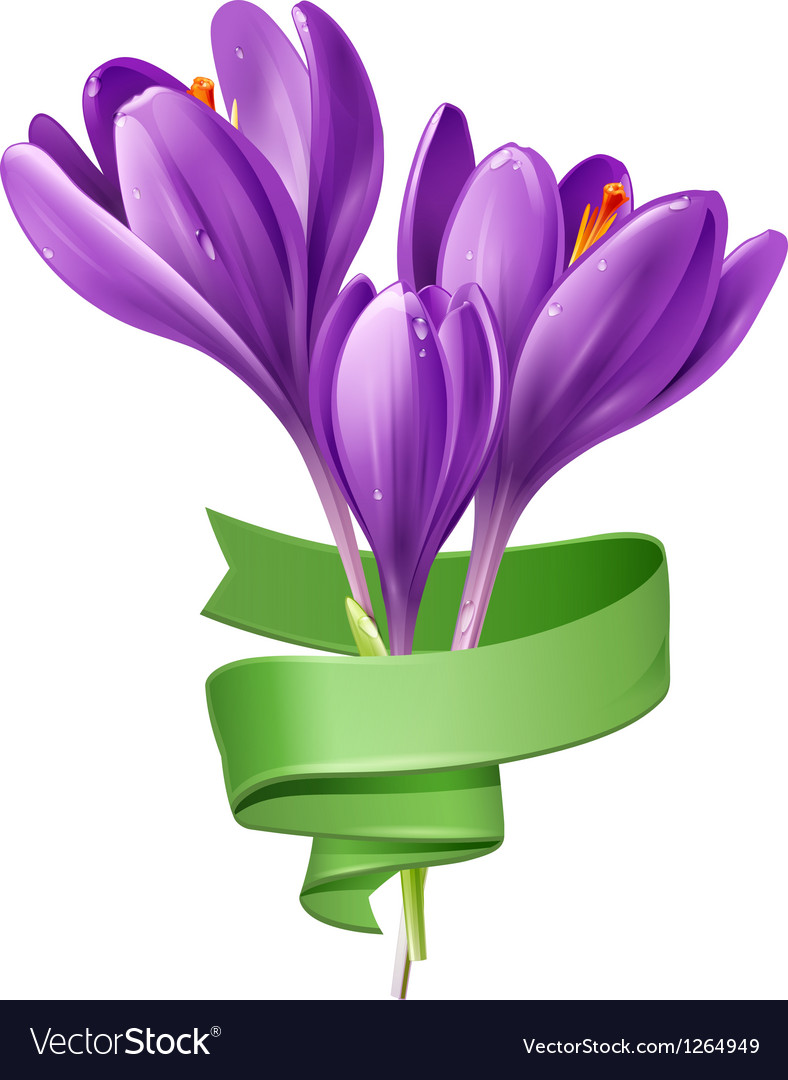 Spring flowers with green ribbon