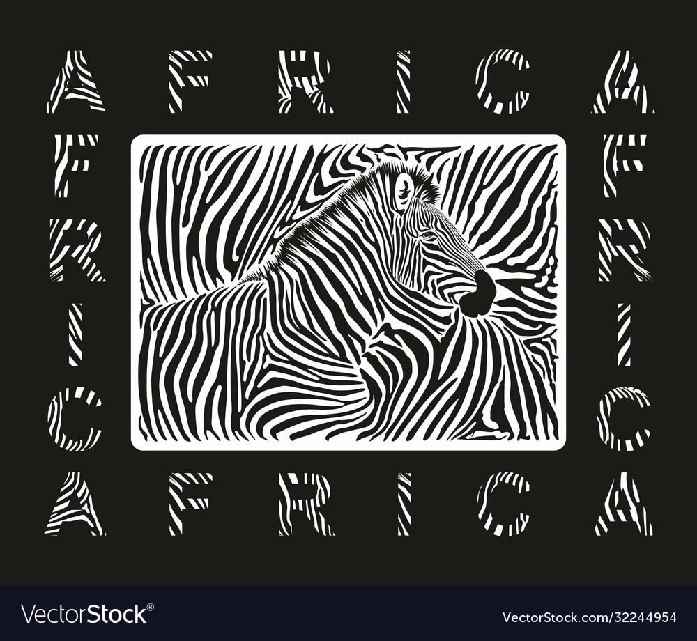Abstract zebra skin texture background
