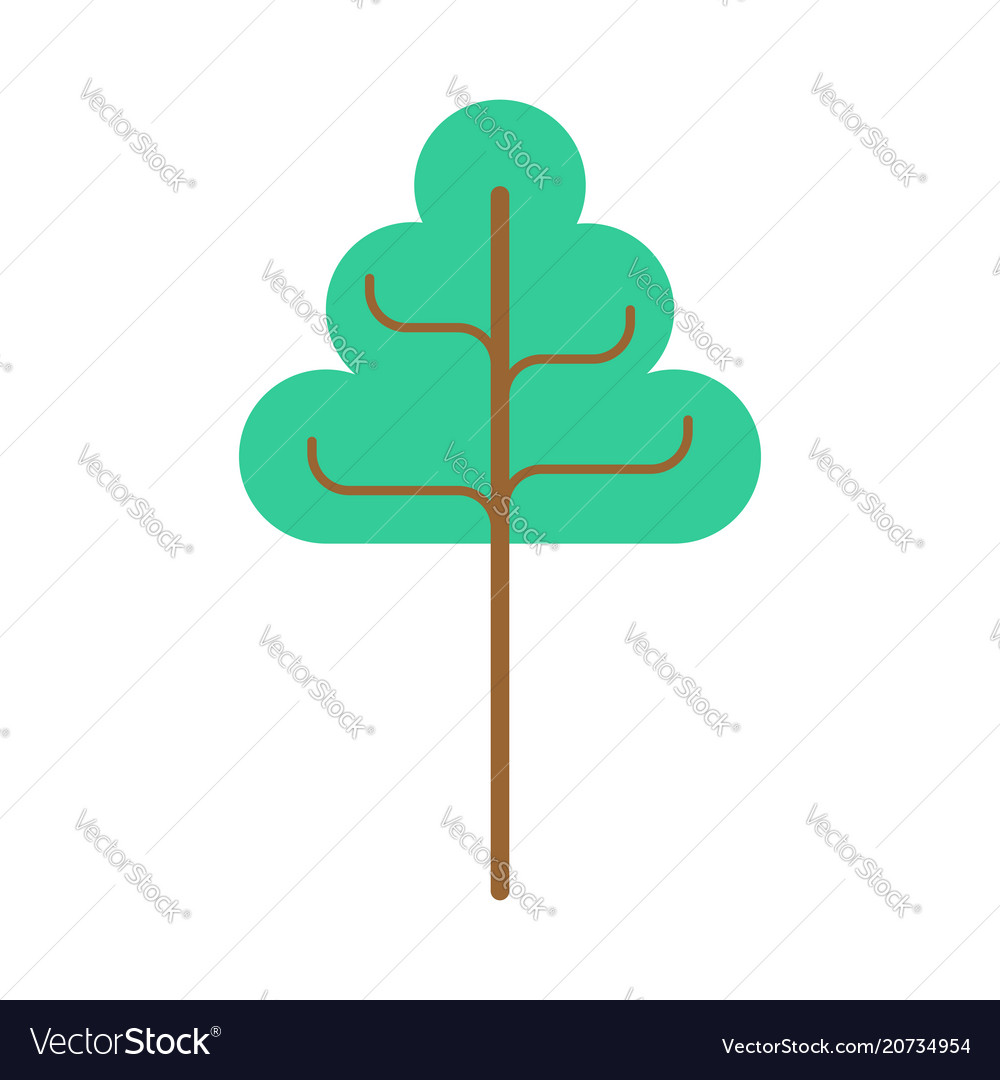 Big tree linden isolated green wood on white
