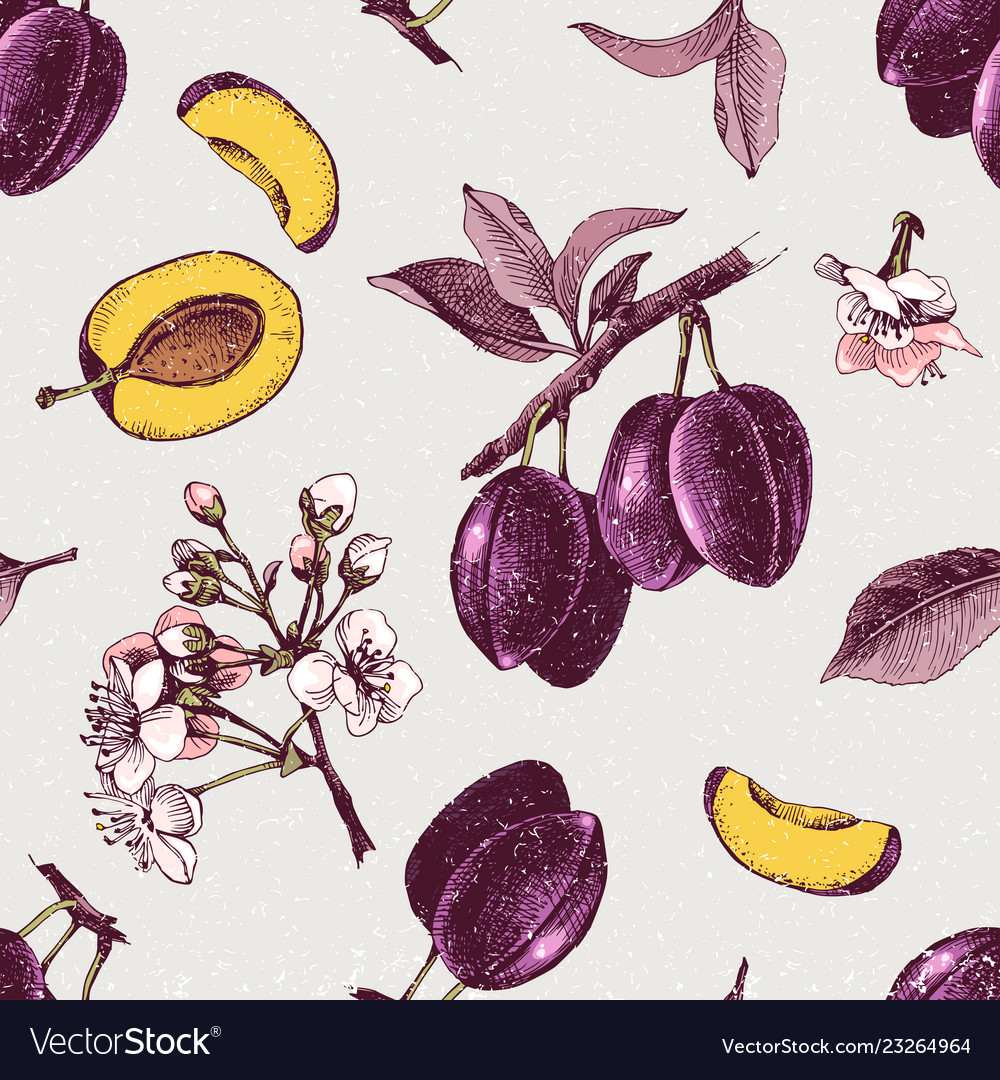 Seamless pattern with hand drawn plum flowers and