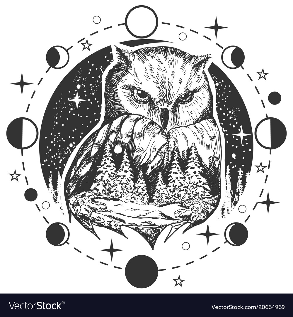 Owl Tattoo Or T Shirt Print Design Royalty Free Vector Image
