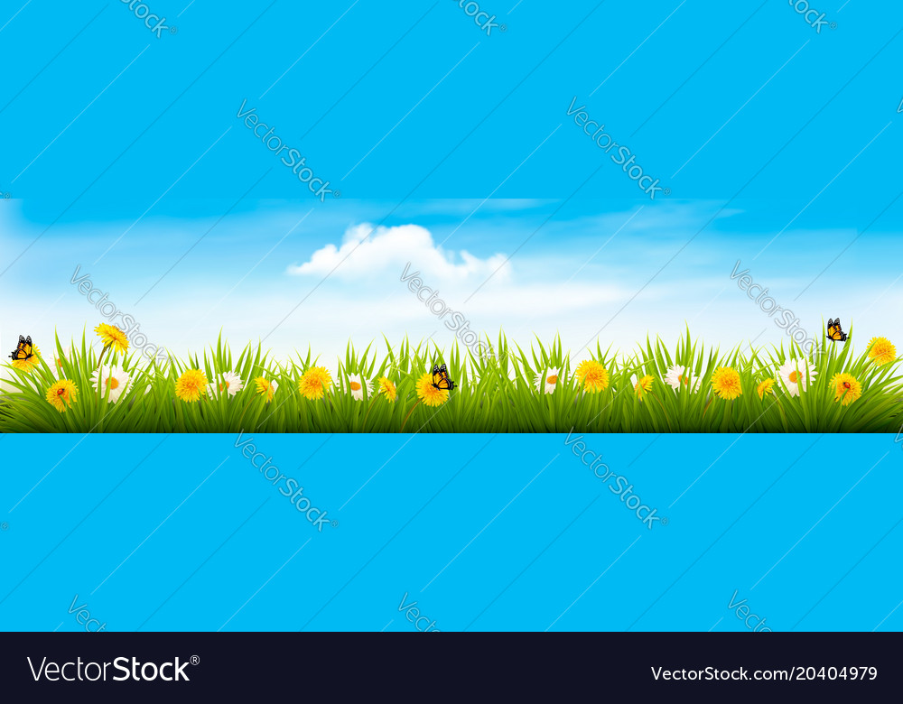 Spring nature landscape banner with flowers and vector image