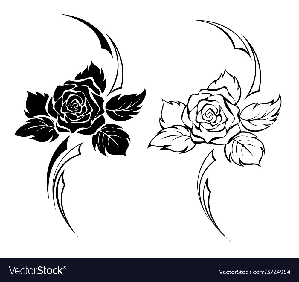 f9ca9d864 Two Monochrome Roses Royalty Free Vector Image
