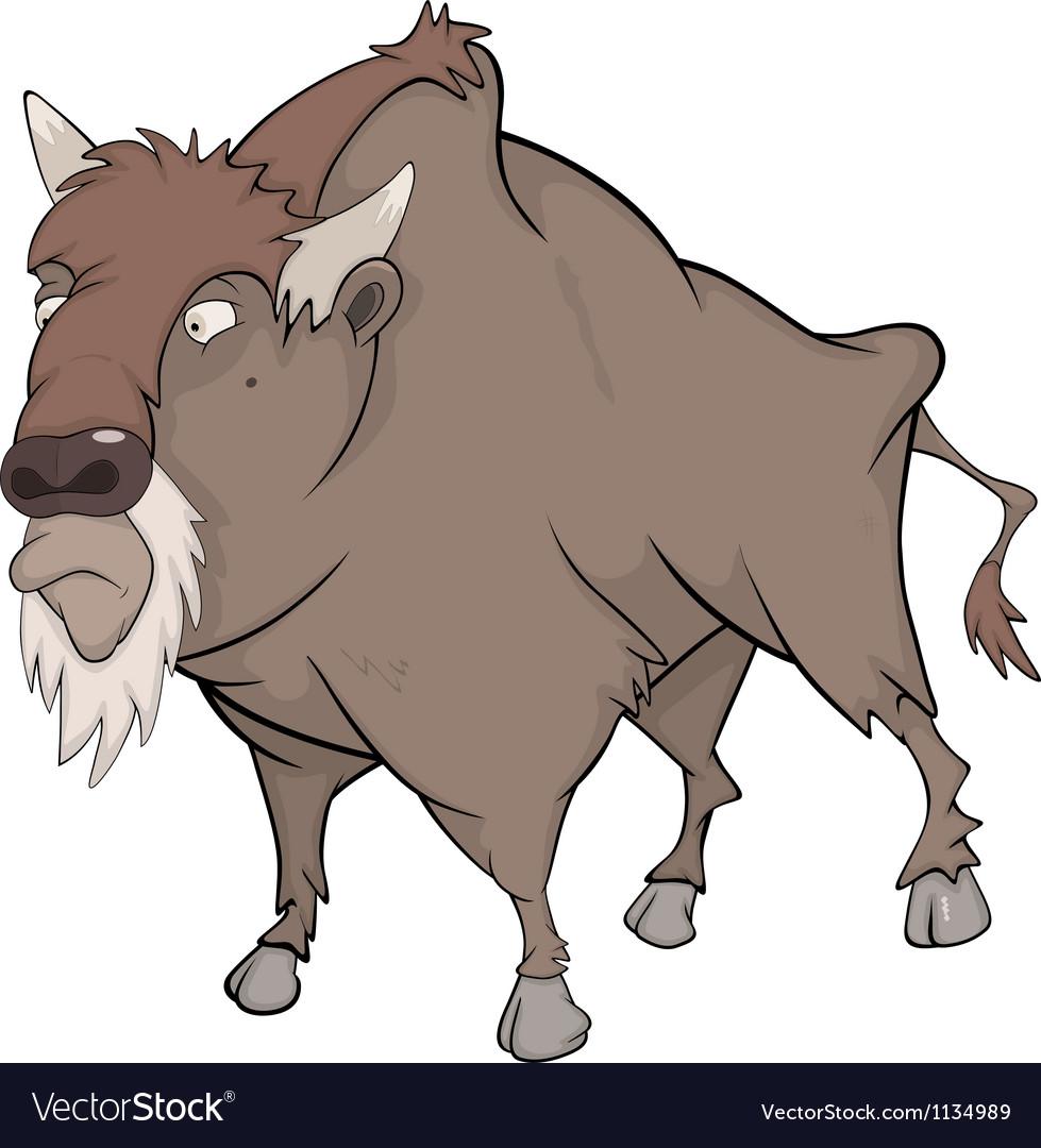 Bison buffalo vector image