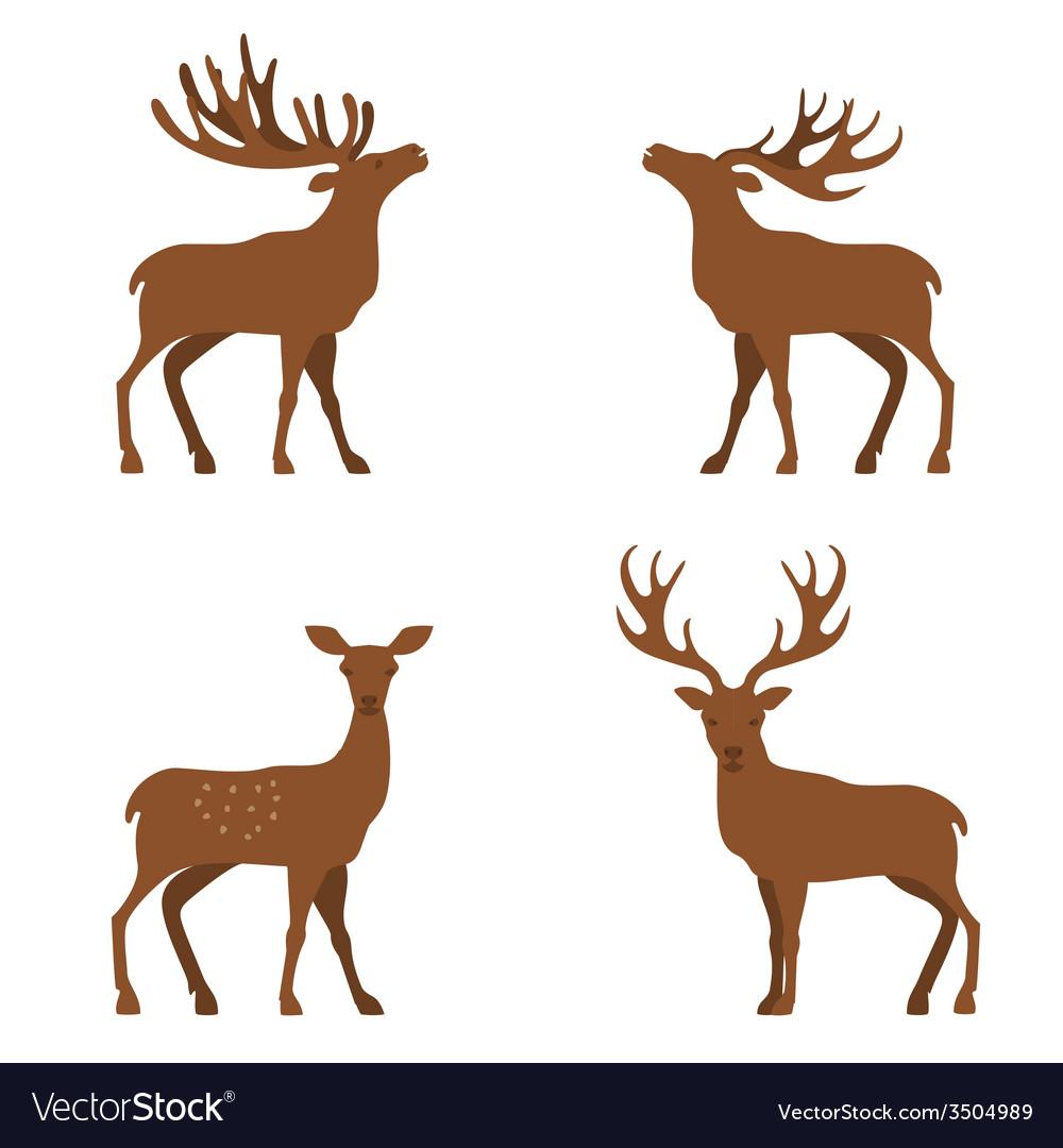 Deer flat