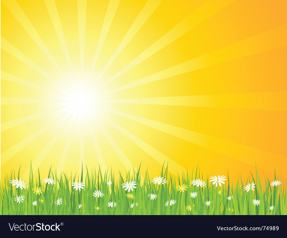 Summer scene vector image