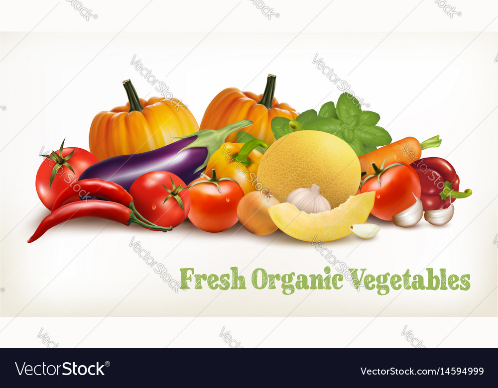 Big set of colorful vegetables